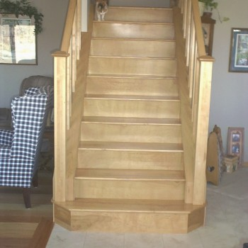 Natural Birch Solid Treads